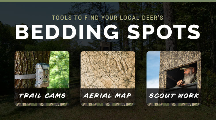 tools to find your local deer's bedding spots