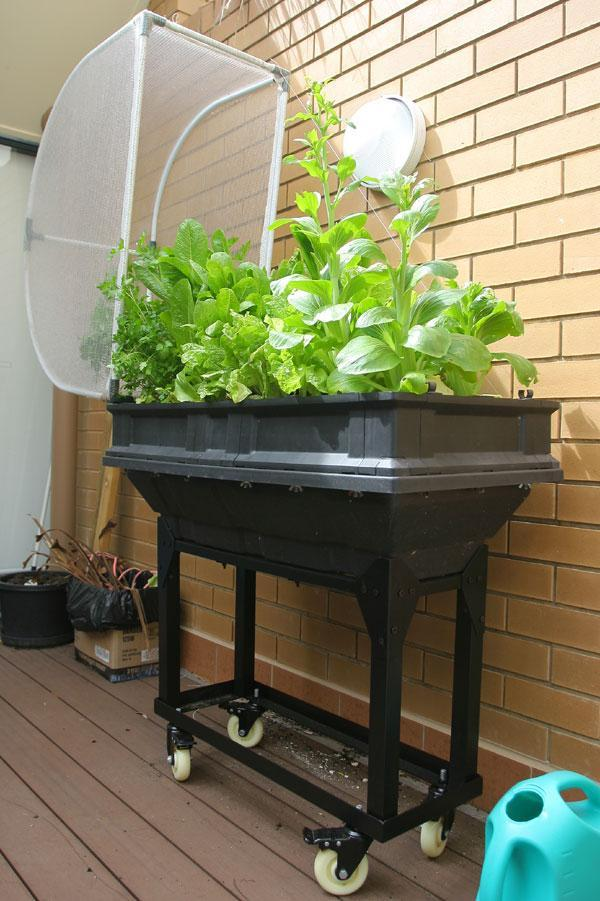 Self-Contained Raised Garden Bed - Large