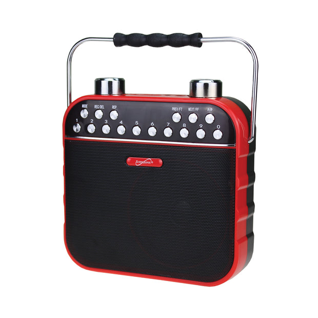 Bluetooth® Portable PA System