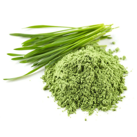 Organic Wheatgrass Powder 4 oz