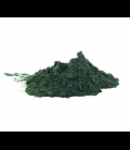 Chlorella Powder 4 oz