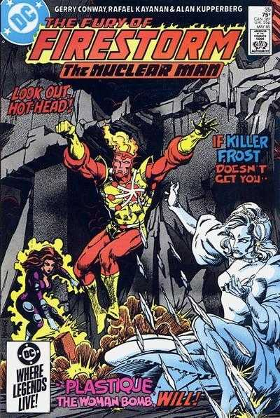 Fury of Firestorm (1982) #35