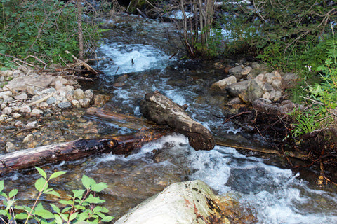 ALEXANDER GOLD Placer Mining Claim, S. Meadow Creek, Madison County, Montana