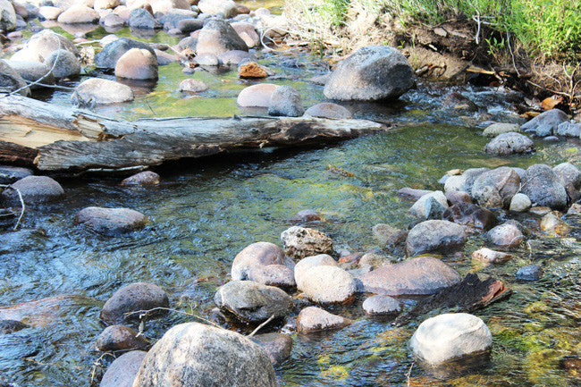 ADMIRAL GOLD Placer Mining Claim, Tensleep Creek, Washakie County, Wyoming