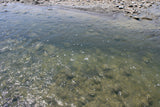 ALOVA GOLD Placer Mining Claim, Cottonwood Creek, Washakie County, Wyoming