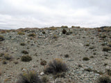 DUCK BONE JADE, Placer Mining Claim, Big Horn Jade, Fremont County, Wyoming