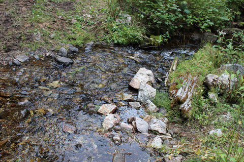 AGRICOLA GOLD Placer Mining Claim, French Creek, Beaverhead County, Montana