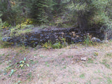 CARTWRIGHT GOLD Placer Mining Claim, Granite Boulder Creek, Grant County, Oregon