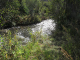 Anaconda Mine Placer Claim in Colorado