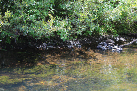 LEVACK GOLD Placer Mining Claim, Squirrel Creek, Fremont County, Idaho