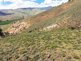 BROWN DERBY 11, Lode Mining Claim, Quartz Creek Pegmatite, Gunnison County, Colorado