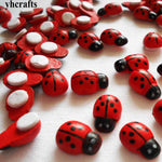 Ladybirds - bag 20g