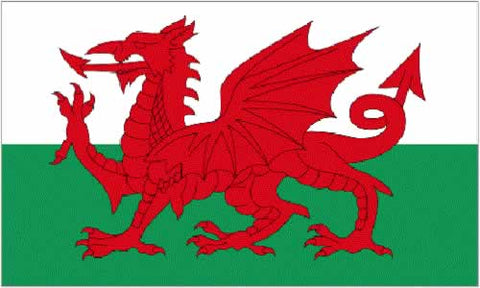 3ft by 2ft Wales Flag