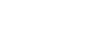 Touch of Vape Logo