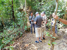 Load image into Gallery viewer, Rainforest Walking, Langkawi