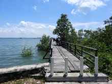 Load image into Gallery viewer, Belungkor Mangrove Village Private Tour for 8 persons