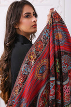 Load image into Gallery viewer, Embroidered Pashmina Shawl