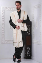 Load image into Gallery viewer, Embroidered Men Pashmina Shawl