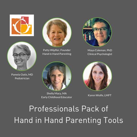 Professionals teaching Hand in Hand Parenting