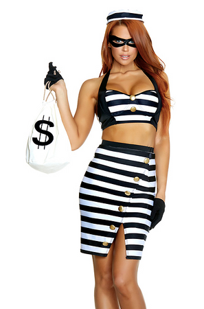 The Ultimate Scam Sexy Robber Costume