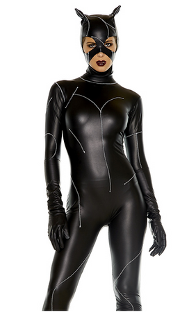 On The Prowl Sexy Cat Villain Costume  sc 1 st  Rumor Apparel & Halloween Costumes u2013 Rumor Apparel