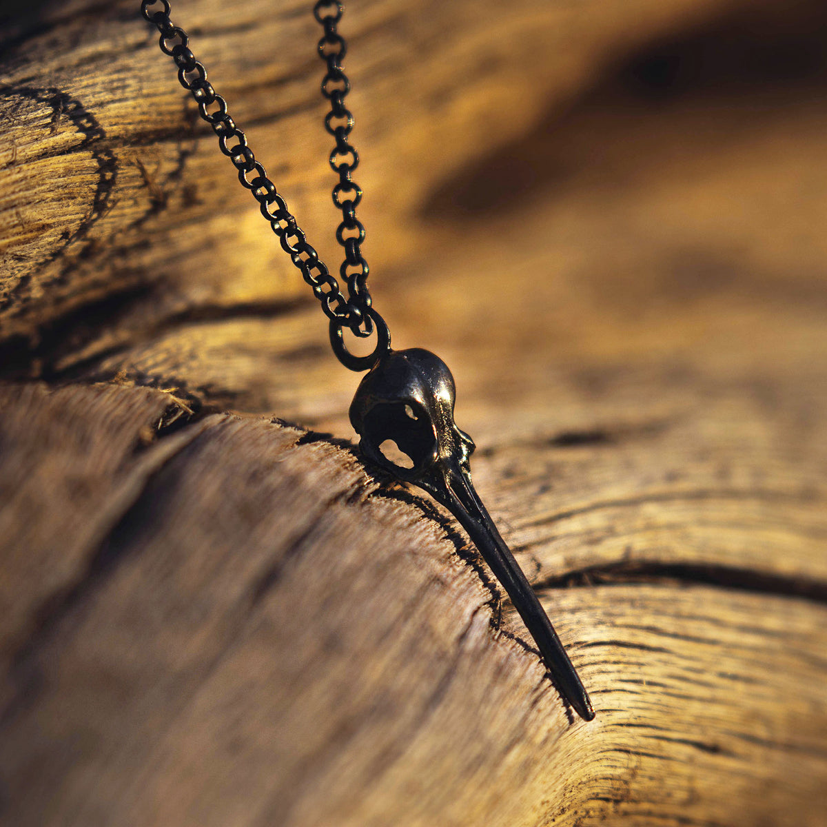 """El Arroyo"" Blackened Sterling Silver Hummingbird Necklace"