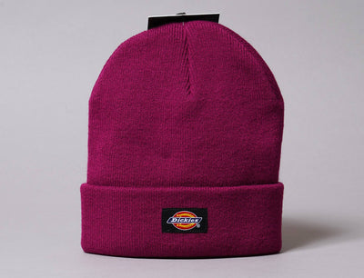 Beanie Cuff Gibsland Beanie Pink Berry Dickies Cuff Beanie / Pink / One Size