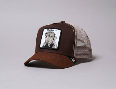 Cap Trucker Goorin Animal Farm Sweet Chocolate Goorin Trucker Cap / Brown / One Size