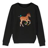 Sweat Animaux Petit poney