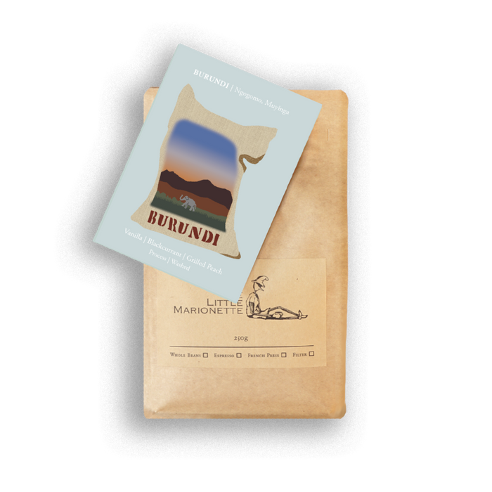single origin coffee bag by The Little Marionette 250g