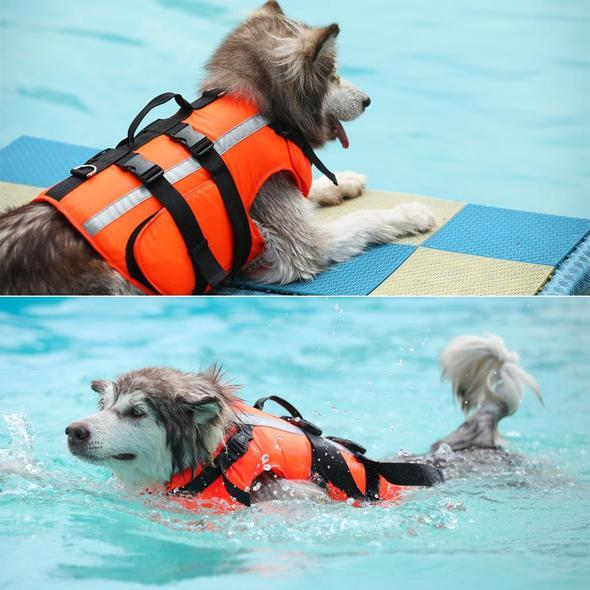 Dog Saver Life Jacket