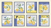 Load image into Gallery viewer, Limoncello citrus panel