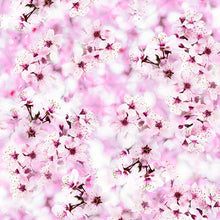 Load image into Gallery viewer, Cherry Blossom or Sakura
