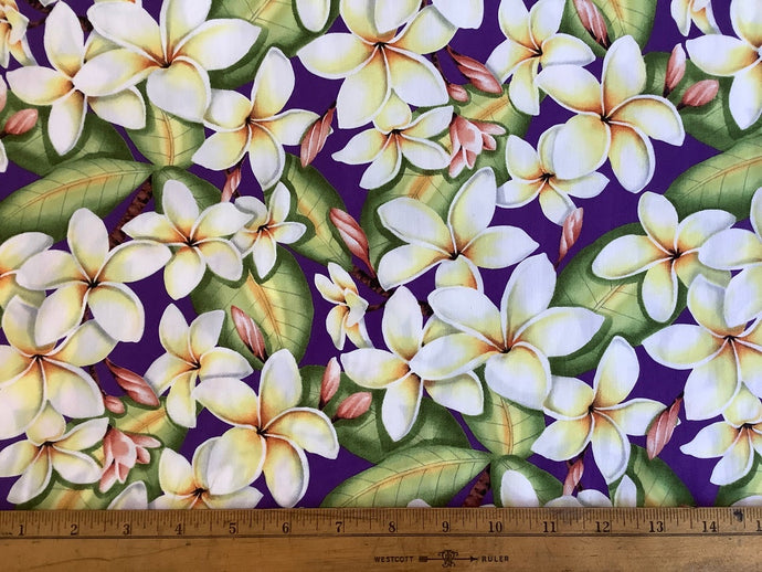 Plumeria or Hawaiian floral purple