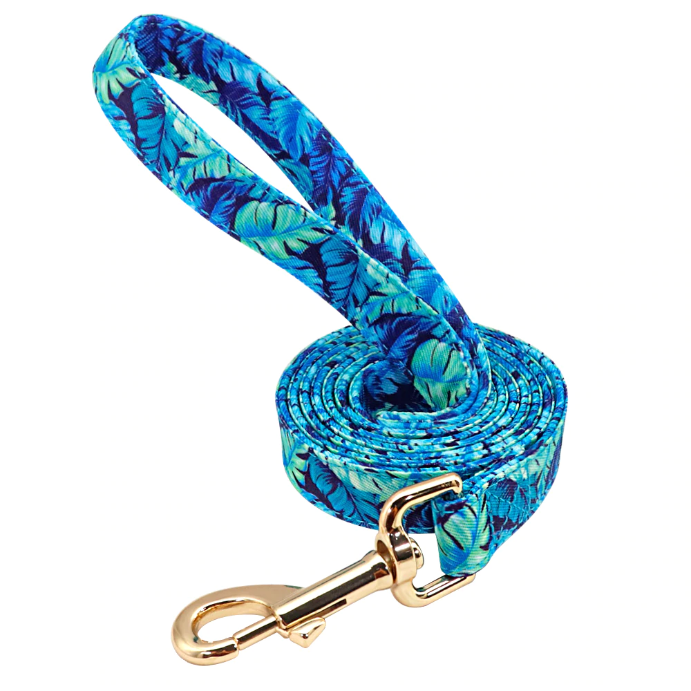 Blue Floscular Dog Leash