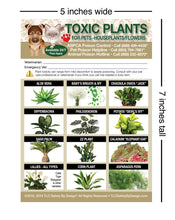 "Load image into Gallery viewer, ENHANCED TOXIC Poison Plants Flowers 5"" x 7"" Poison for Pets Dogs Cats Emergency Home Alone Refrigerator Safety Magnet Veterinarian Approved"