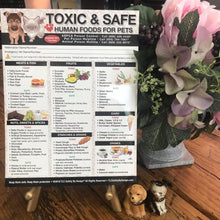 "Load image into Gallery viewer, Premium TOXIC and SAFE FOODS Large Format 8"" x10.5"" Fridge Safety Magnet for Pets Dogs Cats Emergency Home Alone Veterinarian Approved"