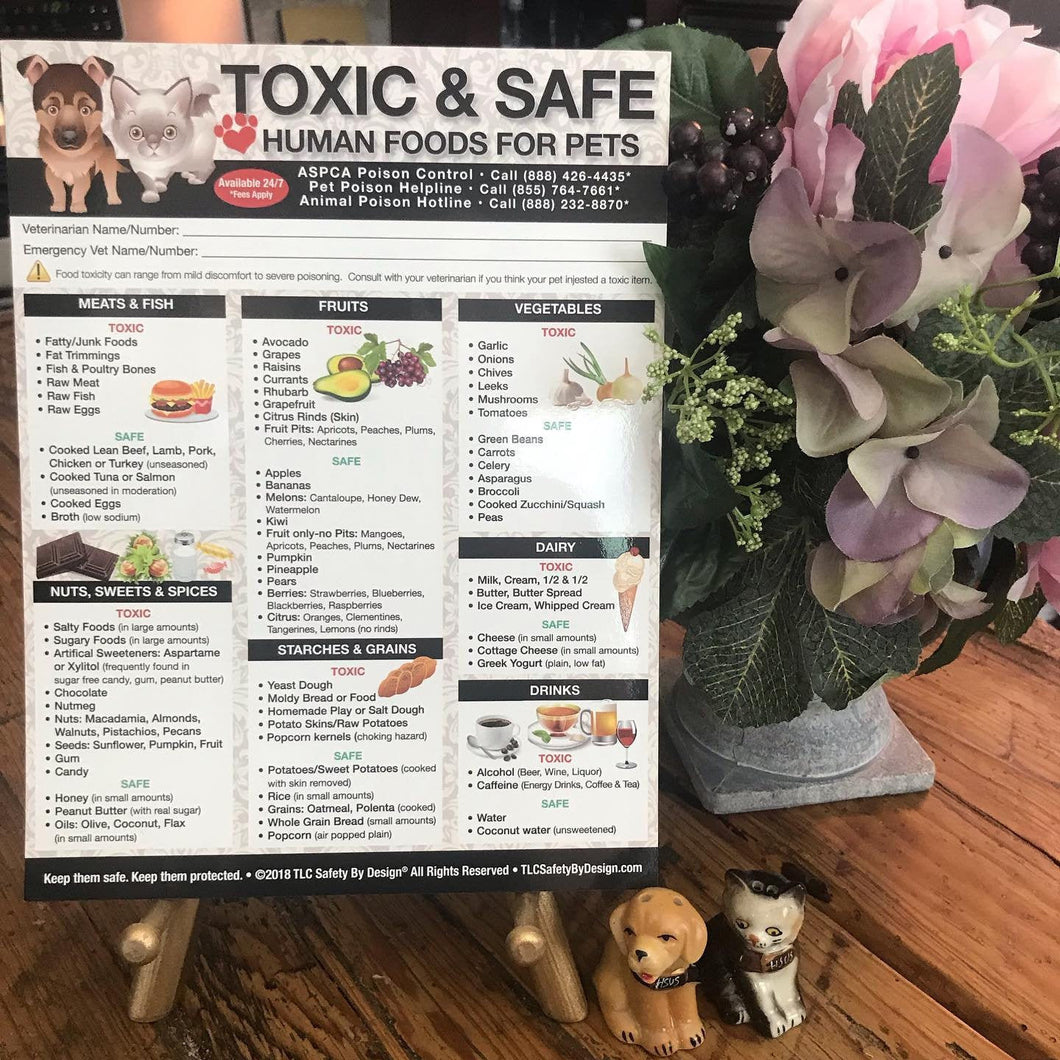 Premium TOXIC and SAFE FOODS Large Format 8