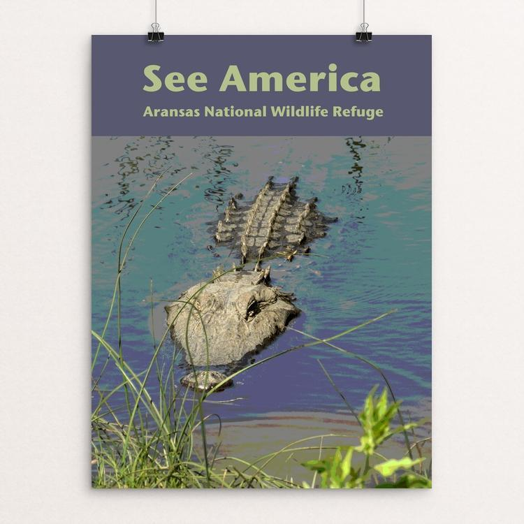 "Aransas National Wildlife Refuge by Jennie Lambert 12"" by 16"" Print / Unframed Print See America"