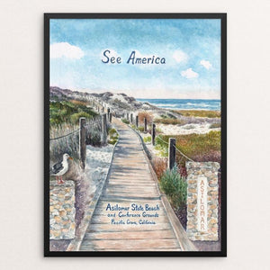 Asilomar State Beach and Conference Grounds by Elizabeth Kennen