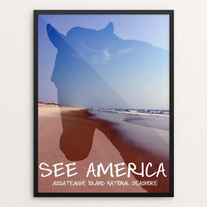 "Assateague Island National Seashore by Kaitlyn 12"" by 16"" Print / Framed Print See America"