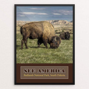 "Badlands National Park by Anthony Iacuzzi 18"" by 24"" Print / Framed Print See America"