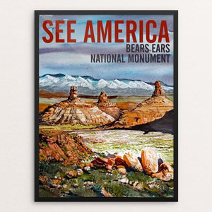"Bears Ears National Monument-Valley of the Gods by Bruce and Scott Sink 12"" by 16"" Print / Framed Print See America"