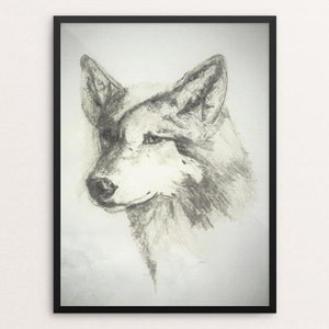 "Beautiful Grey Wolf by Deborah Gorga 12"" by 16"" Print / Framed Print Join the Pack"