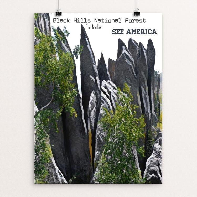 "Black Hills - The Needles by Bryan Bromstrup 12"" by 16"" Print / Unframed Print See America"