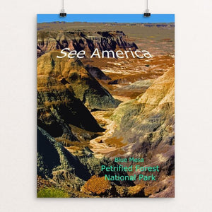 "Blue Mesa, Petrified Forest National Park by Rodney A. Buxton 12"" by 16"" Print / Unframed Print See America"