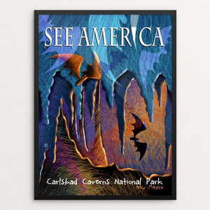 "Carlsbad Caverns National Park by Elena Ospina 12"" by 16"" Print / Framed Print See America"