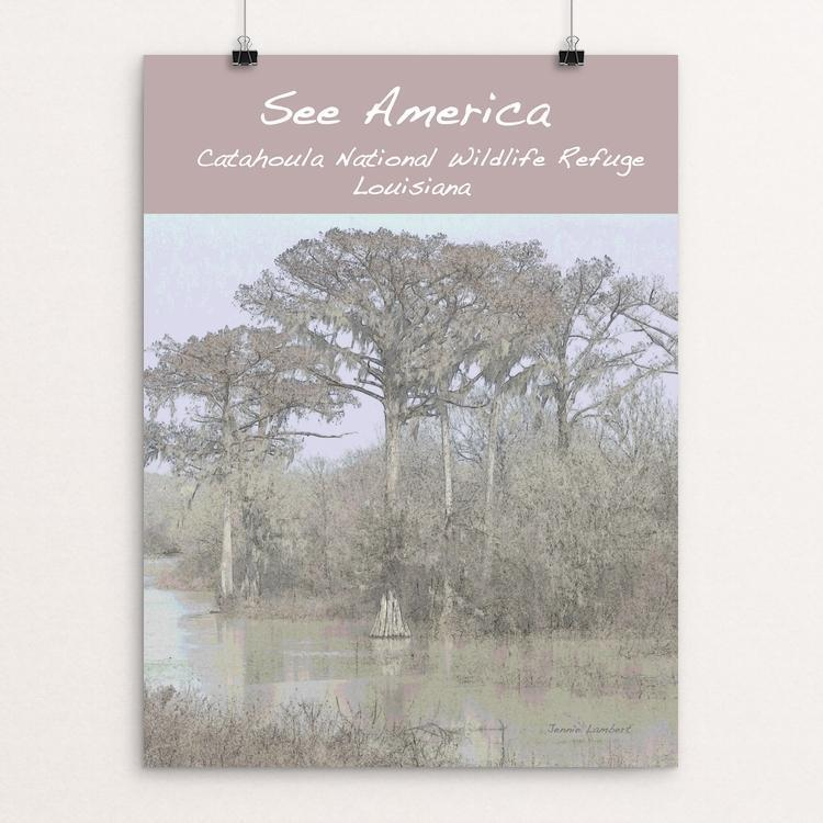 "Catahoula National Wildlife Refuge by Jennie Lambert 12"" by 16"" Print / Unframed Print See America"