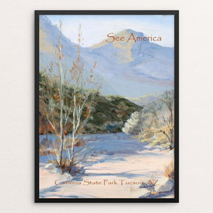 "Catalina State Park by Janine Hart Manemann 12"" by 16"" Print / Framed Print See America"
