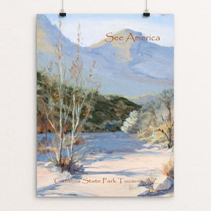 "Catalina State Park by Janine Hart Manemann 12"" by 16"" Print / Unframed Print See America"